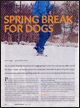 Dogs In Canada Magazine March 2008
